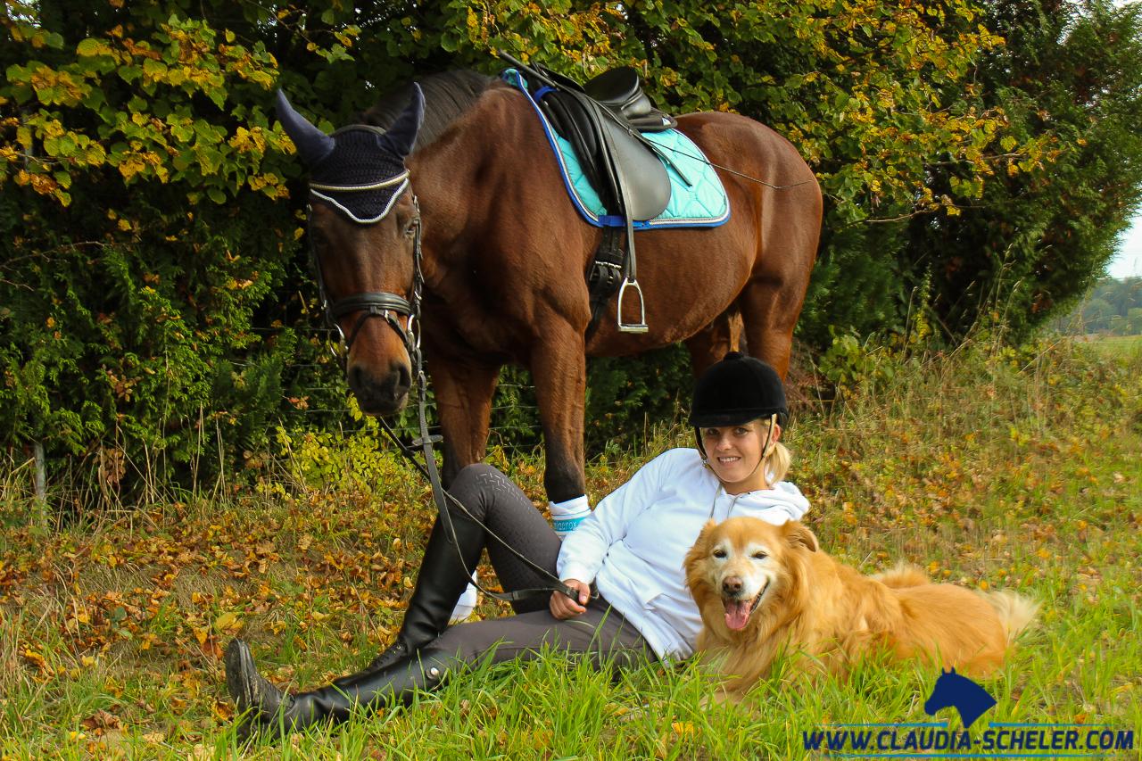 Nie wieder eine Reiterin! [Anzeige] - Claudia Scheler
